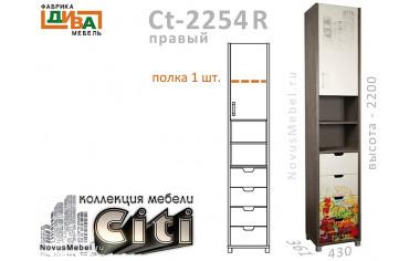 1-дв. шкаф-пенал с 4-мя ящ. ПРАВЫЙ - Сt-2254R