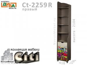 Стеллаж-окончание - Сt-2259R