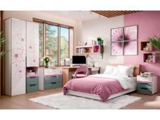 2-х дверный шкаф с нишей и 2-мя ящиками внизу - 528.070-40 ПВ - (L / R) - вар. 3 - с Розовым